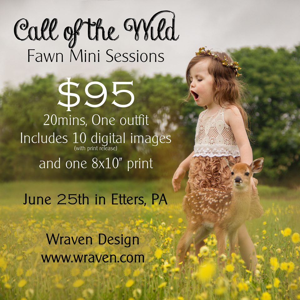 $95 - Call of the Wild  Fawn Mini Session